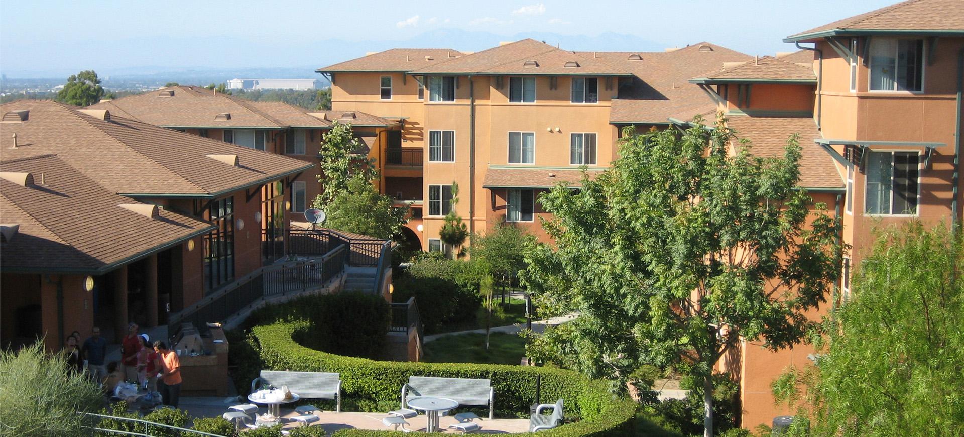 Palo Verde II_Banner Image 2